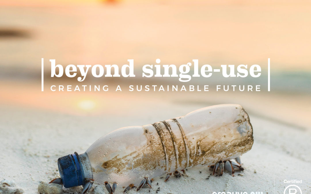 Beyond the Single-Use Water Bottle