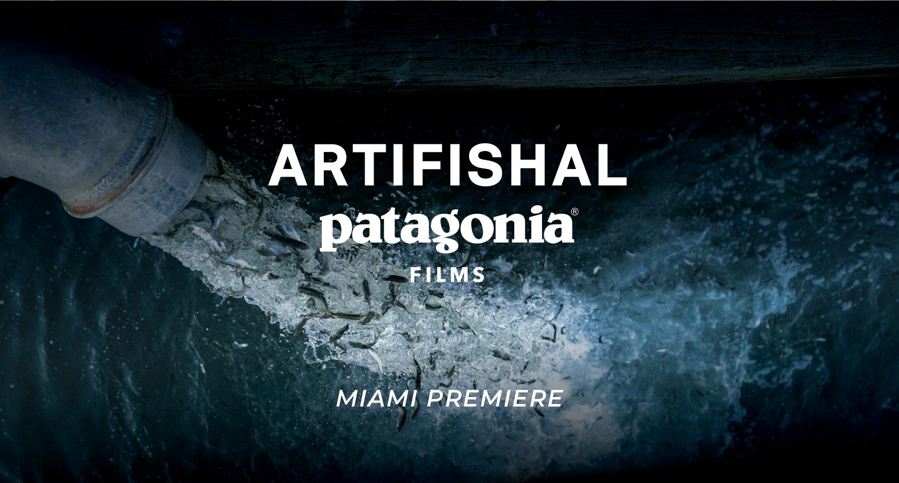 Patagonia Artifishal Film